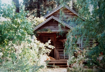 The cabin I grew up in